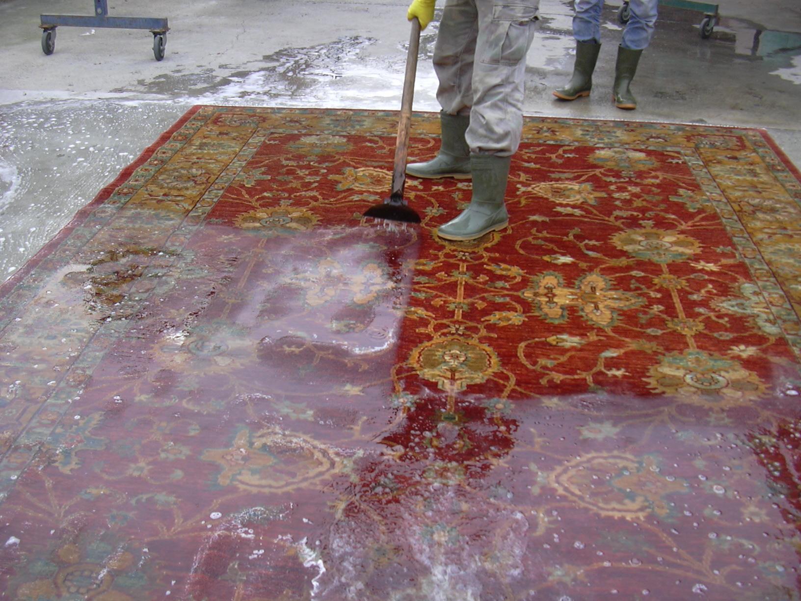 Lavaggio tappeti tutte le offerte cascare a fagiolo - Lavaggio tappeti in casa ...